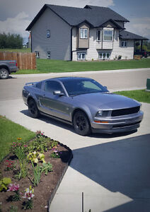 2006 Ford Mustang Pony Coupe (2 door)