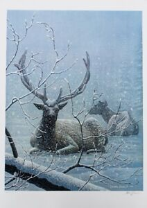 High Country Storm by Canadian Wildlife Artist,LE Print, *New*