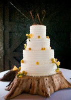 Woodland wedding cakes, rustic weddings and social gatherings