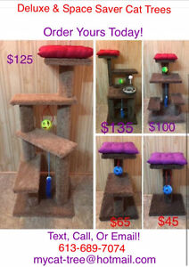 Cat Trees Starting from $45, Place Your Order Today!