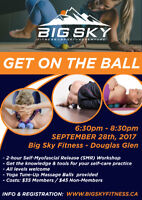 Get on the Ball - Myofascial Work Shop - Learn to Roll & Recover