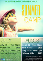 Summer Camps at Goldstream Co-Op Preschool