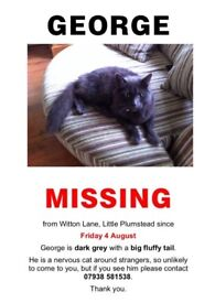 George - still missing since 4th August