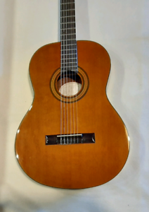 Epiphone  pro 1 classical