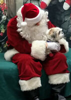Volunteer Santa Claus Wanted for Animal Rescue Fundraiser!