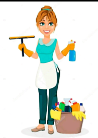 Profesional Cleaning Service - Luton