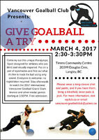 Give Goalball A Try