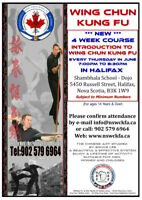 4 week Introduction to Wing Chun Kung Fu.
