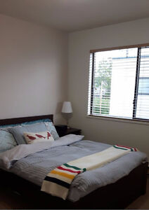 Whole townhouse rent in the heart of Richmond