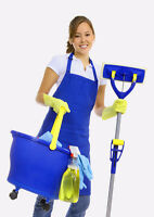 Professional cleaning service at affordable price.