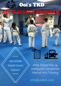 wanted martial artstaekwondo instructor martial arts instructor jobs