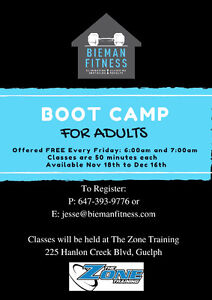 Free Boot Camp Classes at The Zone Training! Cambridge Kitchener Area image 1