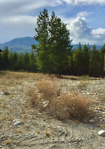 Fantastic Forest Crowne Lot in Kimberley, BC - ONLY $89,000