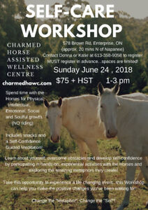 Self Care Workshop with Horses