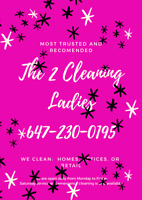 THE2CLEANINGLADIES
