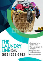 The Laundry Line Mobile Laundry Service