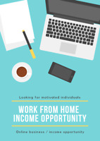 Work from home business / income opportunity (serious inquiries)