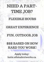 LOOKING FOR A FLEXIBLE PART-TIME JOB?