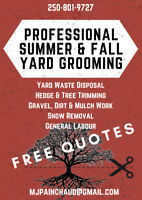 Professional Summer and Fall Yard Services