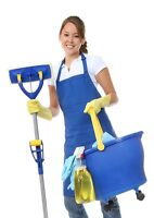 NEAT AND TIDY HOUSE CLEANERS, FALL SPECIAL