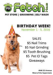 Fetch Pet Boutique & Grooming BIRTHDAY WEEK!