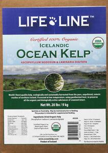 Certified 100% Organic Icelandic Ocean Kelp