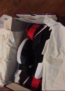 Sellling Lebron Soldier XI shoes