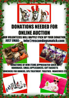 ITEM DONATIONS NEEDED FOR  RESCUE FUNDRAISING AUCTION