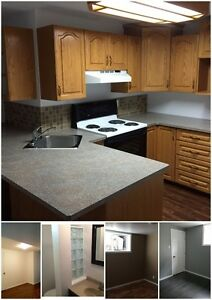 Recently Renovated!