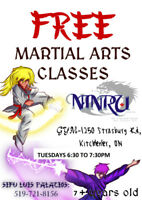 FREE MARTIAL ARTS CLASSES FOR 7 YRS OLD AND UP!!!