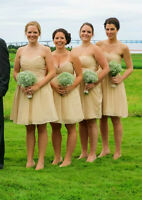 5 Champagne Bridesmaids dresses - $500