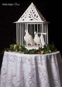 White Angel Doves Berwick Casey Area Preview