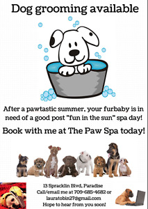 Dog Grooming Available!