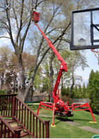 PROFESSIONAL TREE REMOVAL 647-704-0175