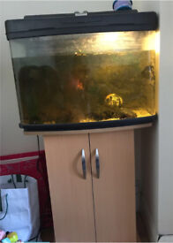 Fish tank and cupboard