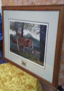 Prints - multi items all framed & ready to hang for  $50.00