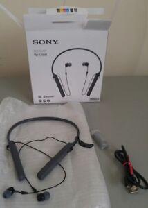 Sony  WIC400 Headphones