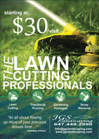 Hamilton Mountain Landscaping and Property Maintenance