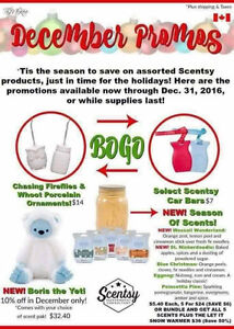 Scentsy December Promos Kingston Kingston Area image 1
