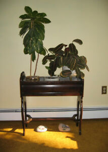 Antique Plant Stand