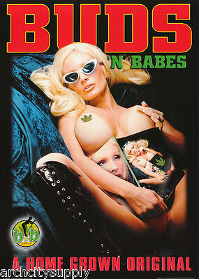 Poster   Marijuana Theme   Buds N Babes    Free Shipping    Gn0069 Lw10 E