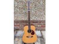 Freshman FA250D12 12 string electro/acoustic guitar