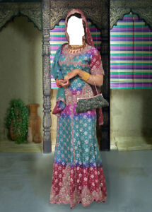 party / Wedding Dress  Indian/ Pakistani 500 OBO
