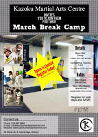 March Break Day Camp - Kids Black Belt Camp