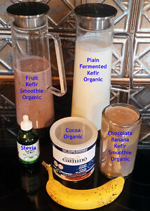 LIVE Organic Milk & Water Kefir Grains BEST Powerful Probiotics
