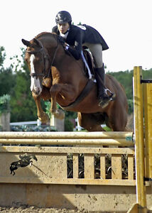 One on one riding lessons- October discount Peterborough Peterborough Area image 1