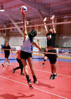 Female Volleyball Player Wanted For Monday Rec League - St. Cath