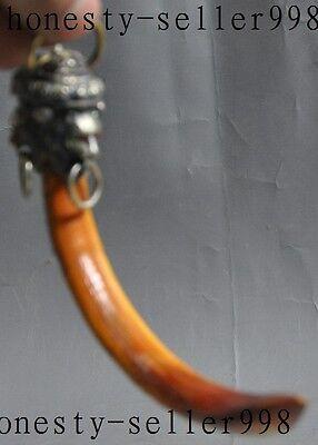 "7.8/"" Collect Old wild boar teeth Mosaic Tibetan silver Lion Pendants"