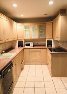 6 Bedroom  house for rent in Thornhill.( Yonge st  and 407 )