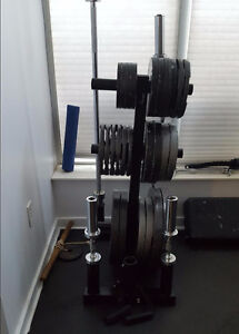 Olympic Weight Plates Tree Rack Stand no dumbbell squat tower